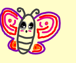 The cutestest butterfly EVER