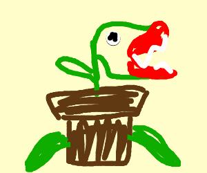 plant monster?