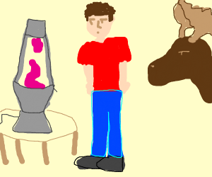 canadian guy and moose looks at lava lamp