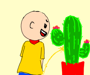 caillou pees on a cactus
