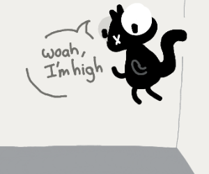cat is high