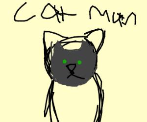 cat batman hybrid