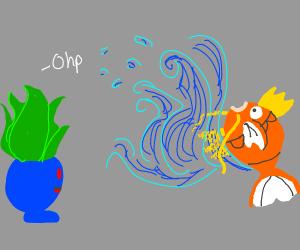 Magikarp used splash! But nothing happened..
