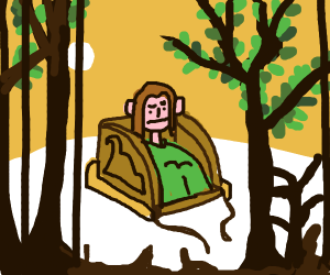 Sitting in a sleigh in the forest