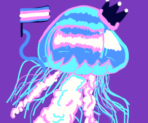 king jellyfish is trans