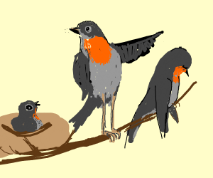 Never talk to me or my son ever again(birds)