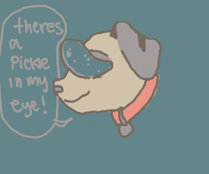 Dog with a pickle in his eye
