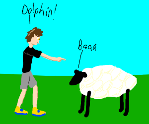 Man confuses sheep with dolphin.