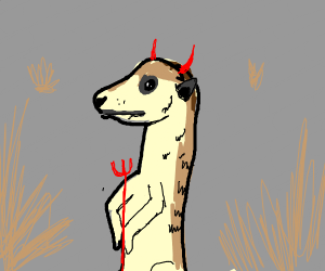 Meerkat from Hell