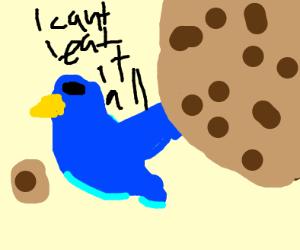 Blue bird needs help eating a giant cookie