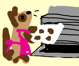 Ferret Baking