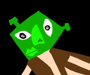 Picasso draws Shrek