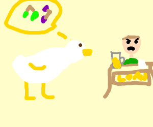 Duck walked up to the lemonaid stand