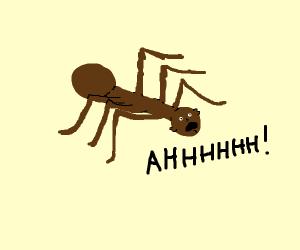 Black man looks like spider saying Ahhhhh