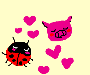Beetle in love with a pig! Aw