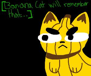Banana Cat will remember that