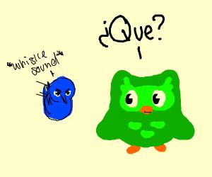 twitter bird pushes duolingo
