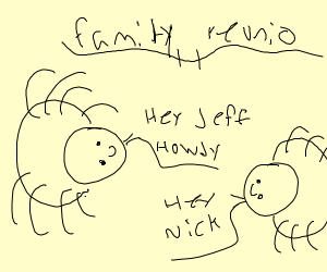 A spider's family reunion