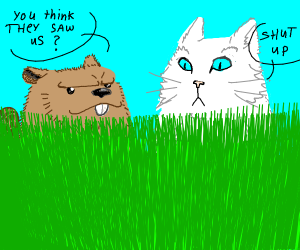 Beaver and cat hide in tall grass
