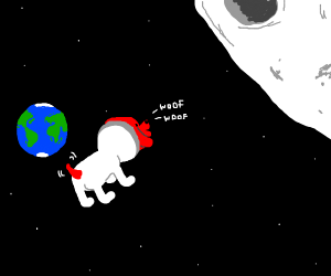 Red Doge in Space