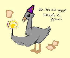 Grey goose doing magic tricks