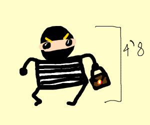 Short Burglar