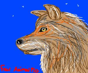 Fav. Animal PIO
