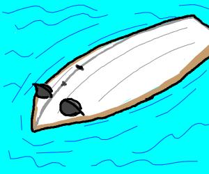 Unconscious boat