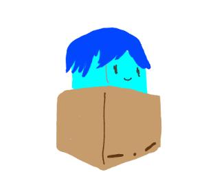A blue box with hair an top of a brown box