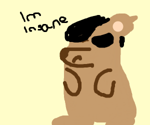 "some emo ""i am insane"" bear"