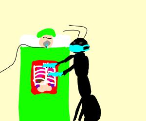 Ant Surgeon