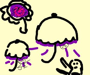 portal umbrellas