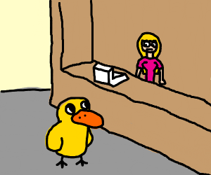 duck comes to a store