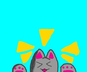 smol kitten