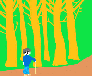 Old woman in a forest