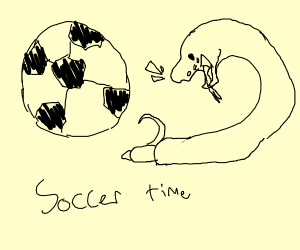 Snake smacks it's face against a soccer ball