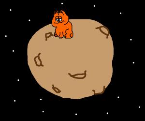 Garfield on a meteor
