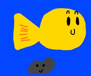 Fish tank with tiny rock creature