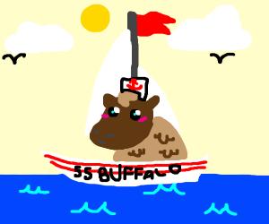 Buffalo Sailing