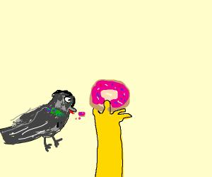 Homer Pigeon eating Donut