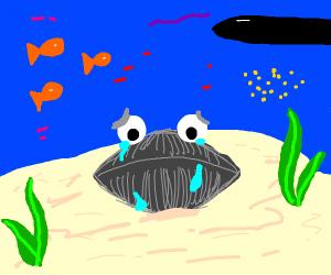 sad clam