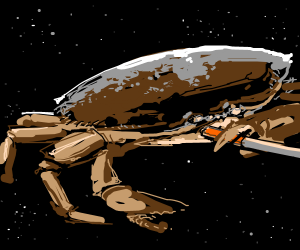crab smoking while in space