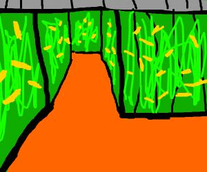 Corn Maze Videogame