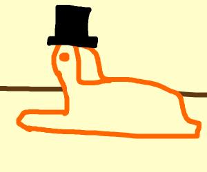 Sphynx wearing a Top Hat