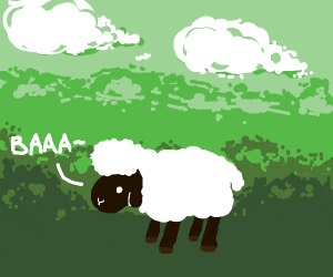 Sheep with afro