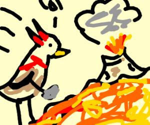Woodpecker digging into Lava