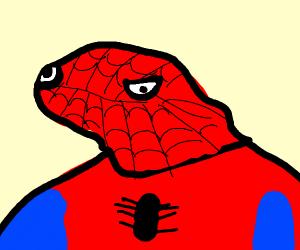 spooder man