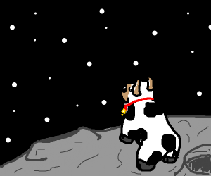 Cow on the moon, looking at stars