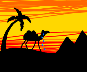 crying camel