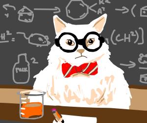 Sience cat (professor cat)